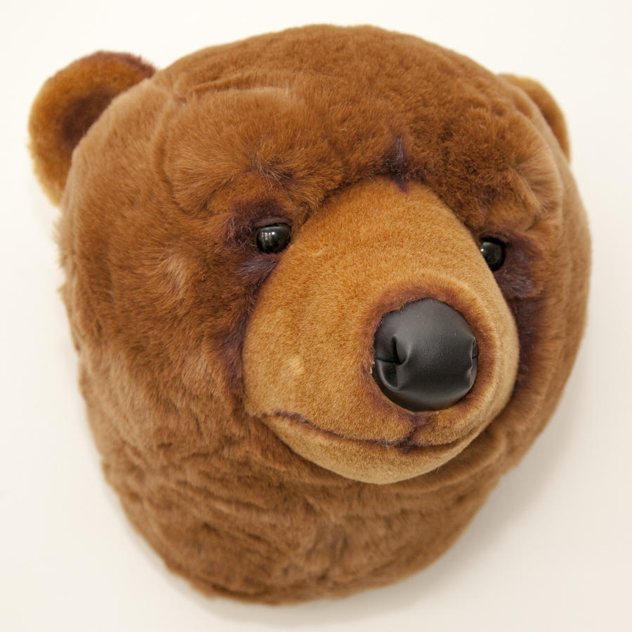 Animal head wall mounts for children's bedroom - grizzly bear