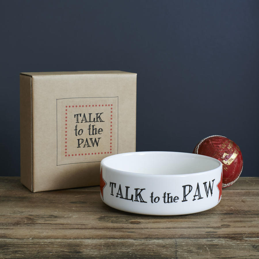 Small ceramic dog or cat bowl featuring - Talk to the Paw