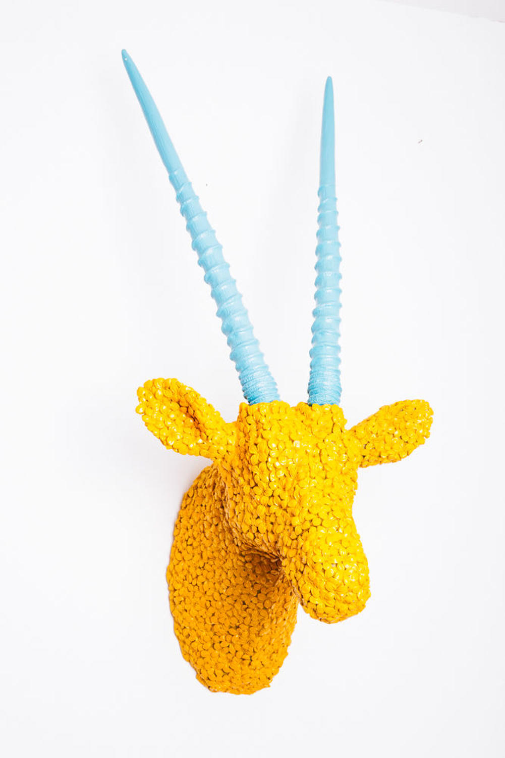 Yellow antelope trophy head with turquoise horns