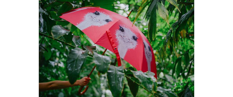 Pink walker umbrella with ostrich design - Emily Smith