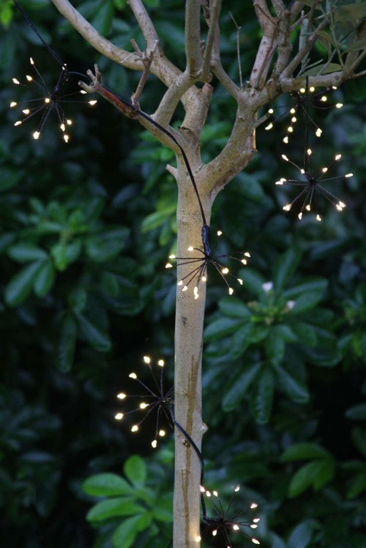 Black starburst indoor/outdoor 6m light string